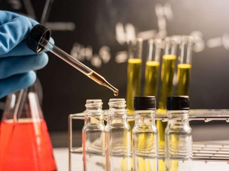 I metalli nell'olio extravergine di oliva: non solo un profilo (chimico), ma una vera impronta digitale